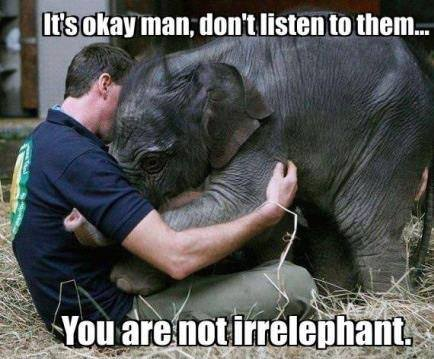 http://theoakinitiative.org/src/images/12%20-%20Irrelephant.jpg